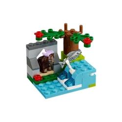 reka-medvedu-hnedych-2
